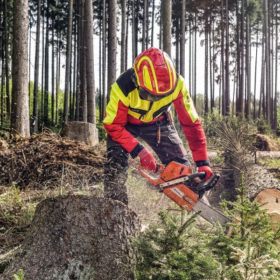 Forestry and Arboriculture Clothing and PPE